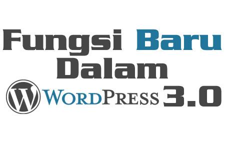 Fungsi Baru Dalam WordPress 3.0