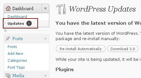 Fungsi Baru Dalam WordPress 3.0 - Update Berpusat